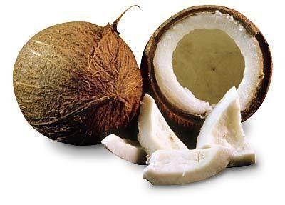 Les fruits - noix de coco -