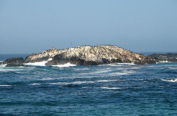 Parcs, réserves... - les rochers aux oiseaux -