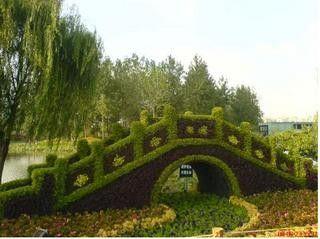 Arbres et arbustes - L'Art Topiaire -