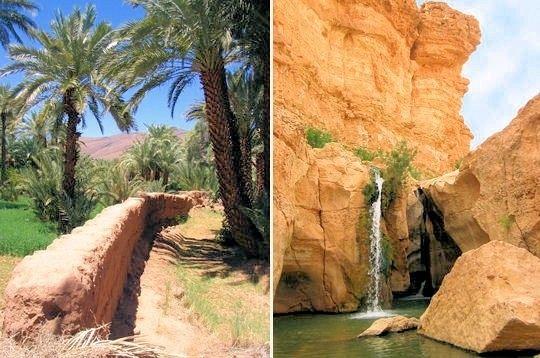 Voyage - les oasis, la vie au coeur des déserts -