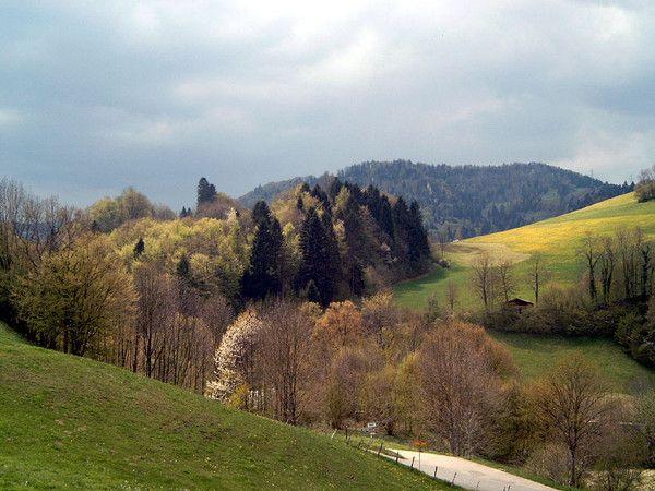Les quatre saisons - Le printemps - Nature et arts -