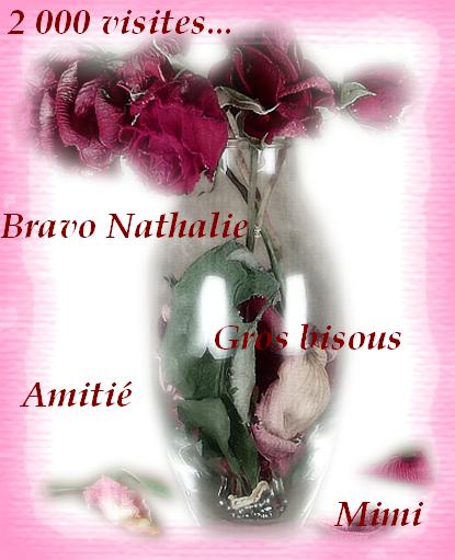 Cadeau pour Nathalie - (lilimay)