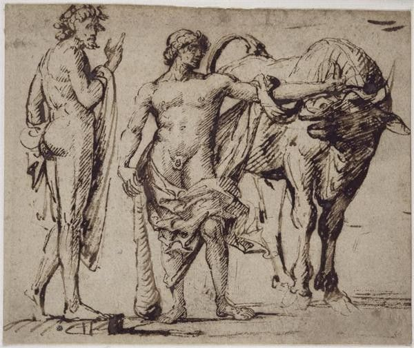 Mythologie Greco-romaine-Hercule-Travaux-7-Taureau de Crète
