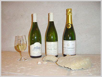 La vigne et le vin - vin de Pouilly sur Loire -