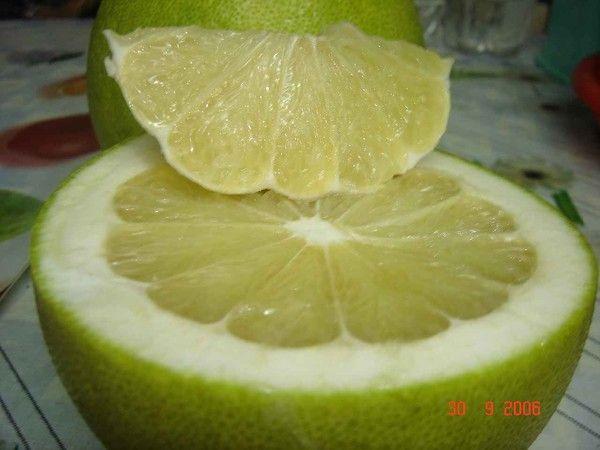 Les fruits - Le pomelo -