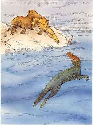 Animaux préhistoriques - Ambulocetus -