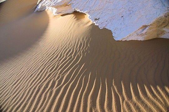 Les déserts - Désert blanc d'Egypte - suite -
