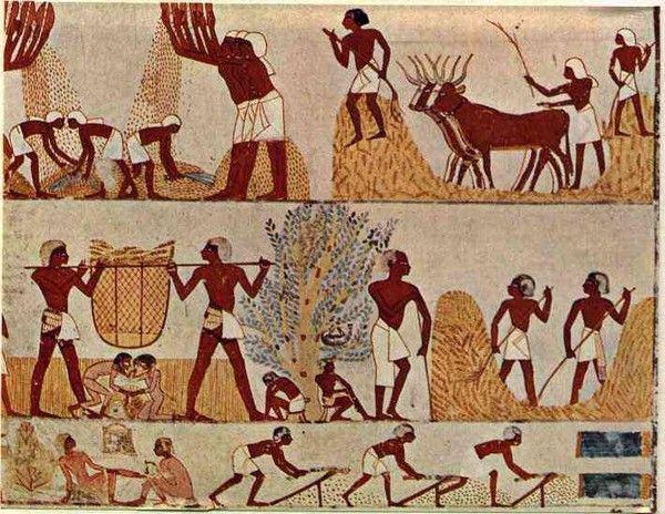 Histoire - Antiquité - Egypte ancienne - 2650-2150 -