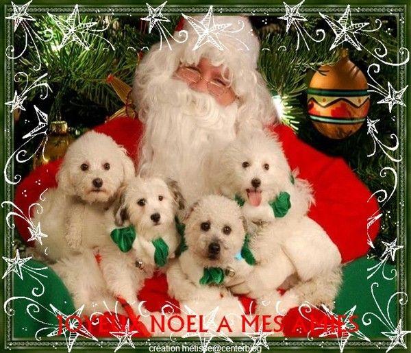 Joyeux Noël chez  Sylvie...