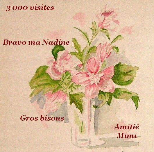 Cadeau Pour Nadine -  (Minisreveries)
