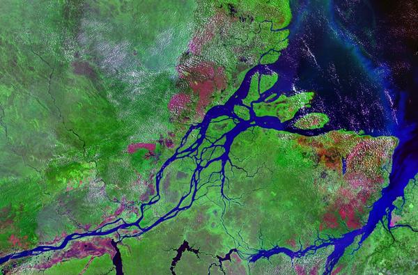 Fleuves et rivières - L'Amazone -