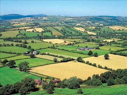 Agriculture et agronomie - Histoire -