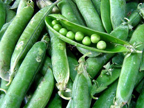 Les légumes - Le petit pois -