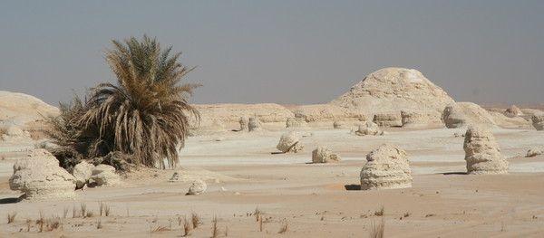 Les déserts - Désert blanc d'Egypte -