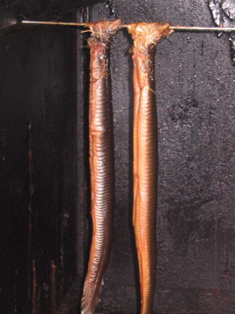 La photo des brunes avec les taches de rousseur