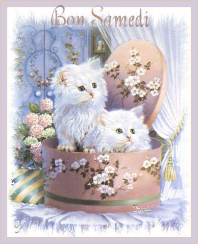 Bonjour et bonne journée à tous...
