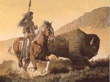 Le bison d 39 amerique centerblog - Coloriage bison d amerique ...