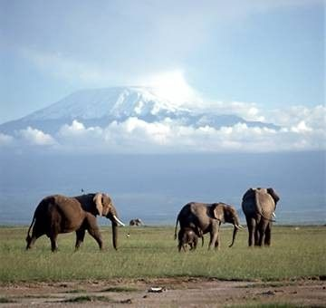 Montagnes et failles - Le Kilimandjaro -