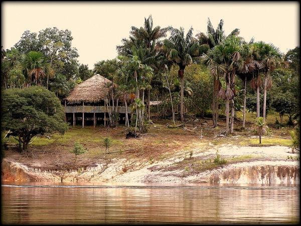 amazonie-10.jpg