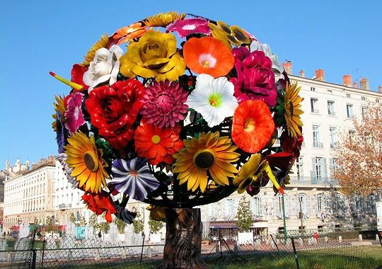 arbre-fleurs-277644-2074251.jpg
