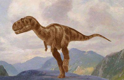 Les dinosaures - L'Abelisaurus -