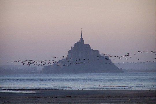 baie-mont-saint-m.jpg