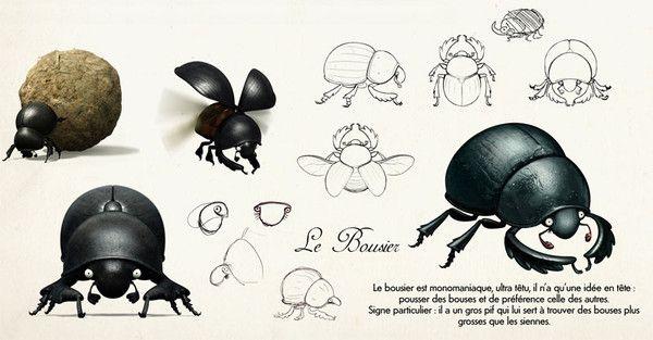 Animaux - Insectes - le bousier -