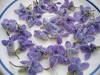 Bonbons et gourmandises - La violette de Toulouse