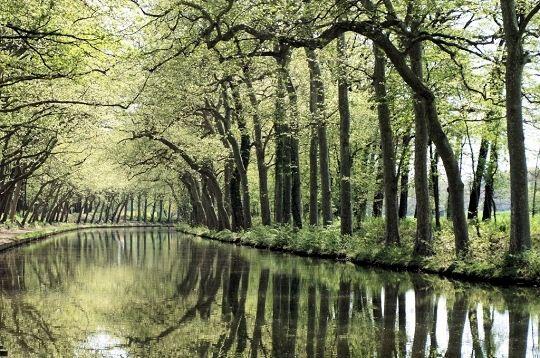 canal-midi-547744-1a2d0a0.jpg