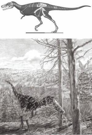 Les dinosaures - Alioramus altai -