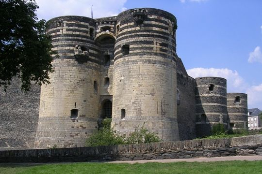 chateau-roi-rene-598605.jpg