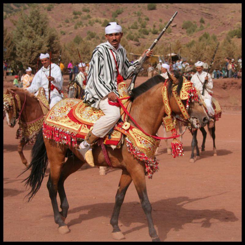 cheval-arabe-1fdd6c6.jpg