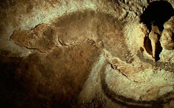 cheval-grotte-2064eb6.jpg