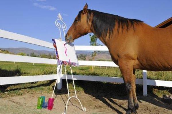 cheval-peintre-13a3048.jpg