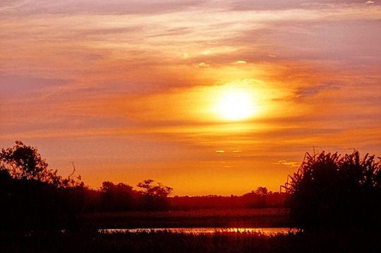 coucher-soleil-288923-2158625.jpg