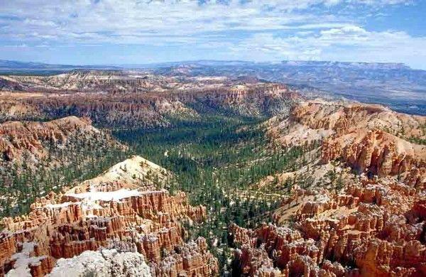 Parcs, réserves... - Bryce Canyon - Faune - Mammifères -