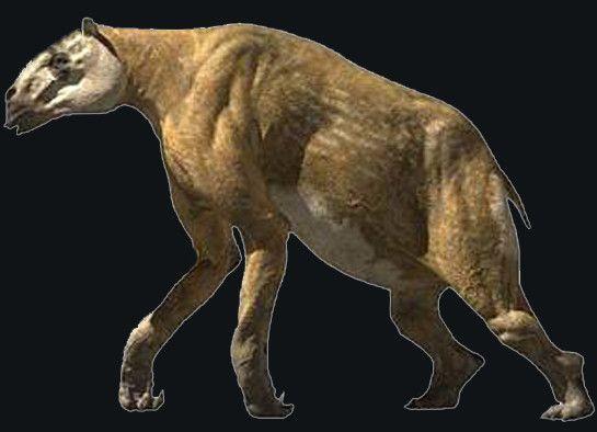 Animaux préhistoriques - Chalicotherium -