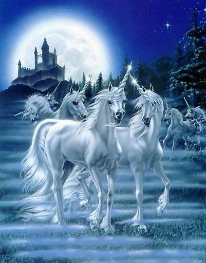 Croyances, superstitions... - La licorne