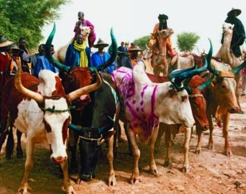 Patrimoine culturel immatériel de l'humanité - Yaaral -
