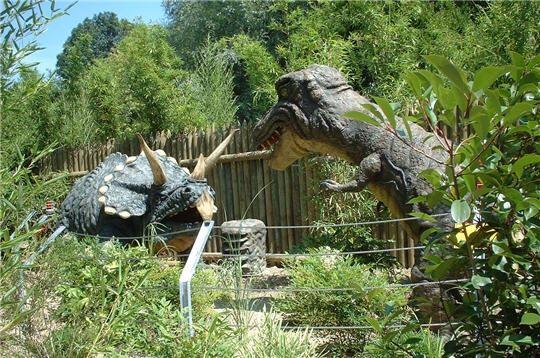 dinosaures-244231-232c052.jpg