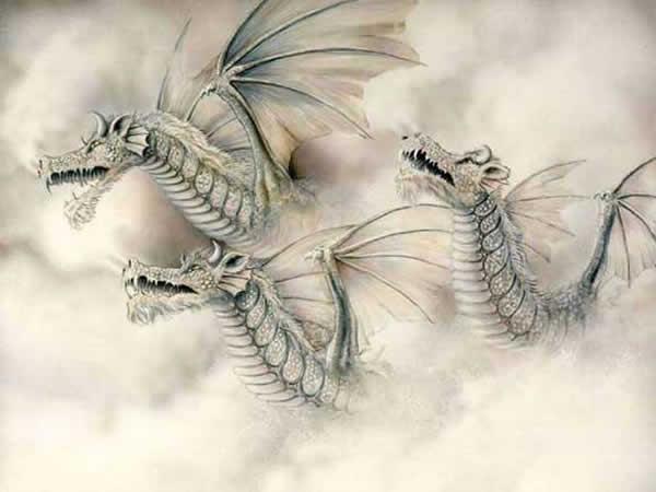 dragon_010.jpg