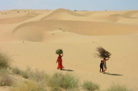 dunes-indiennes-282475-2296e2e.jpg