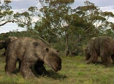 Animaux préhistoriques - Diprotodon -