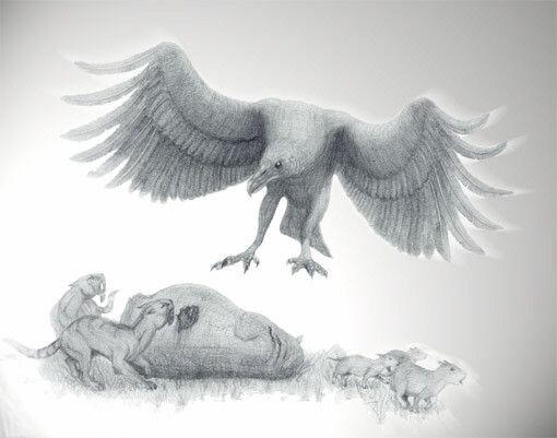 Animaux préhistoriques - Argentavis magnificens -