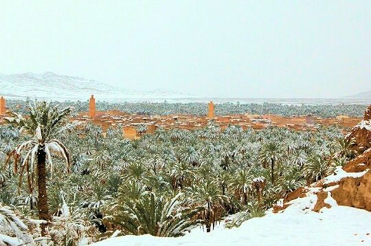 figuig-sous-neige.jpg