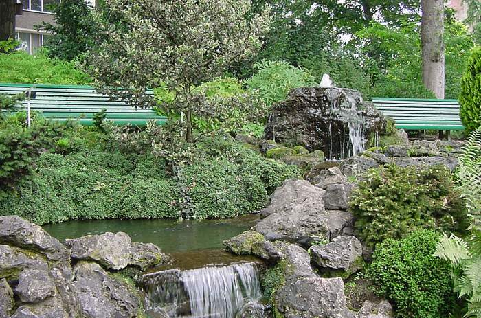 jardinbotanique1-121932e.jpg
