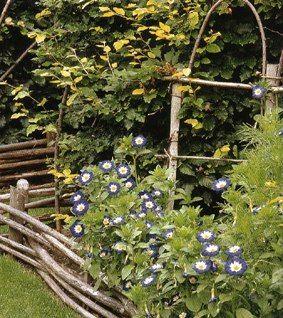 jardinete3-130b21f.jpg