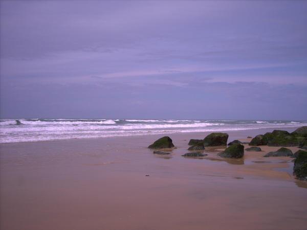 l-ocean.jpg