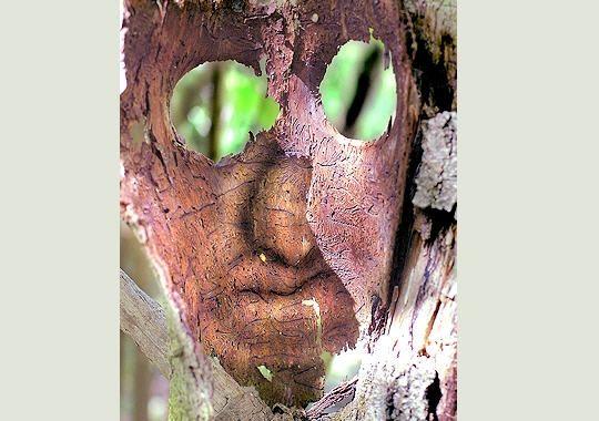 masque-bois-277614-2074134.jpg