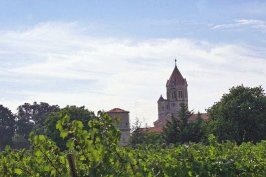 moines-vignerons-538453-1a3f4b4.jpg